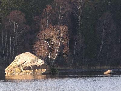 Stor sten i Stensjön vid Guttamåla