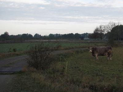 Radioantennerna i Hörby september 2011